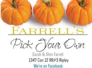 Farrell's Pick Your Own